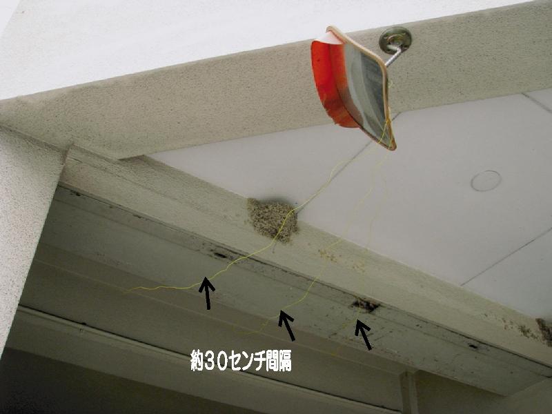 ツバメ の 巣 対策